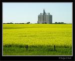 Calgary East, Alberta